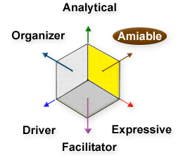 Amiable, Analytical, Driver, Expressive, Facilitator, Organizer
