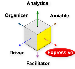 Expressive, Analytical, Amiable, Driver, Facilitator, Organizer
